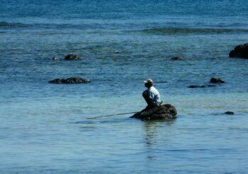 El arte de pescar con el anzuelo