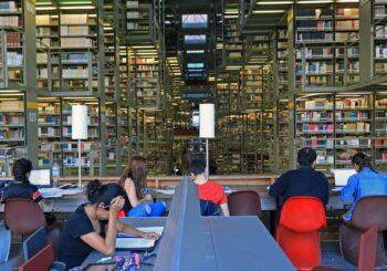 Del fenómeno de la no lectura a la necesidad de una cultura lectora